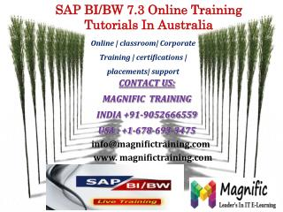 SAP BI/BW 7.3 Online Training Tutorials In Australia