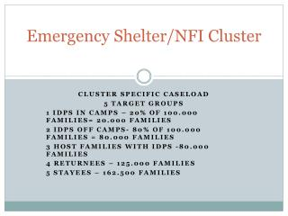 Emergency  Shelter/NFI Cluster