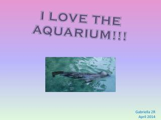I LOVE THE AQUARIUM!!!