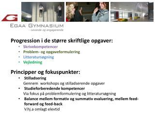 Progression i de større skriftlige opgaver: Skrivekompetencer Problem- og opgaveformulering