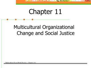 Multicultural Organizational Change and Social Justice