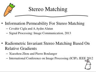 Stereo Matching
