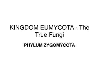 KINGDOM EUMYCOTA - The True Fungi