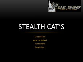 Stealth CAT's
