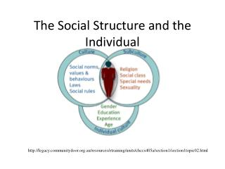 The Social Structure and the Individual