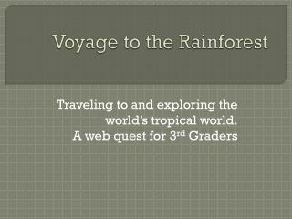 Voyage to the Rainforest