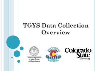 TGYS Data Collection Overview