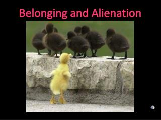 Belonging and Alienation