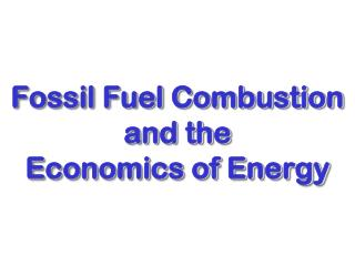 Fossil Fuel Combustion  and the  Economics of Energy