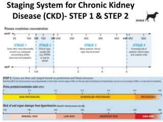 Staging System for Chronic Kidney Disease (CKD )-  STEP  1 &  STEP  2