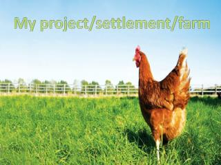 My project/settlement/farm