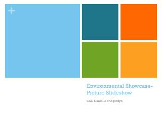 Environmental Showcase- Picture Slideshow