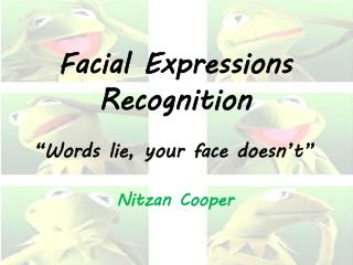 Facial Expressions Recognition