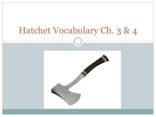 Hatchet Vocabulary Ch. 3 & 4