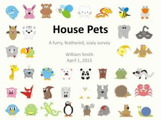 House Pets