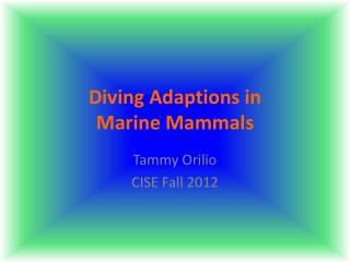 Diving Adaptions in  Marine Mammals