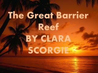The Great Barrier Reef BY CLARA SCORGIE