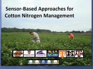 Sensor-Based Approaches for Cotton Nitrogen Management