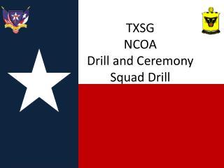 TXSG  NCOA  Drill and Ceremony Squad Drill