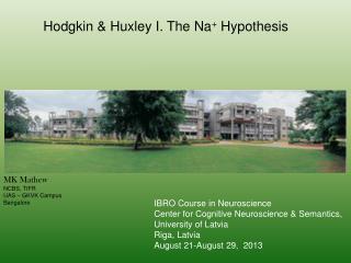 Hodgkin & Huxley I. The Na +  Hypothesis