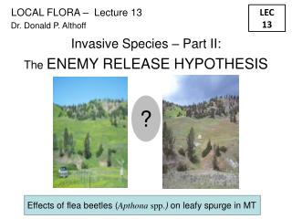Invasive Species – Part II: The  ENEMY RELEASE HYPOTHESIS