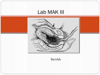 Lab MAK III