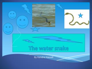 The water snake