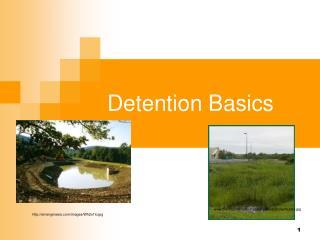 Detention Basics
