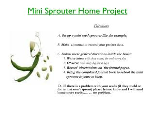 Mini  S prouter  Home Project