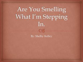 Are You Smelling What I'm Stepping In.