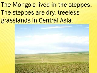 The Mongols lived in the steppes. The steppes are dry, treeless  grasslands in Central Asia.