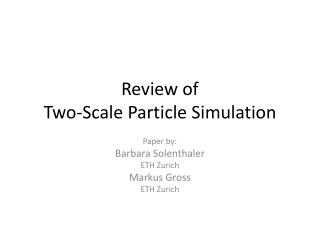 Review of  Two-Scale Particle Simulation