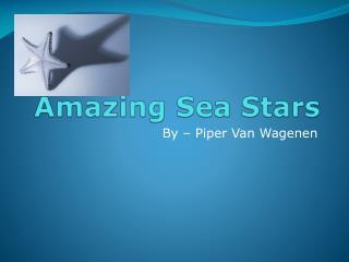 Amazing Sea Stars