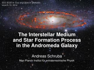 The Interstellar Medium and Star Formation Process in the Andromeda Galaxy