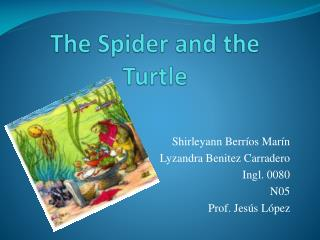 The Spider and the Turtle