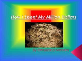 How I Spent My Million Dollars