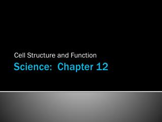 Science:  Chapter 12