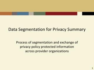 Data Segmentation for Privacy Summary