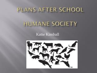 Plans after School Humane Society