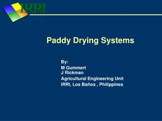Paddy Drying Systems