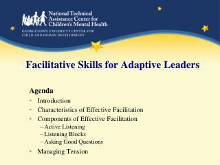 Facilitative Skills for Adaptive Leaders
