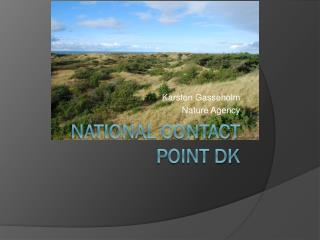 National Contact Point DK