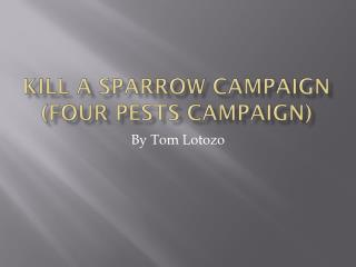 Kill a Sparrow Campaign (Four Pests Campaign)