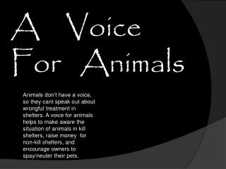 A    Voice   For   Animals