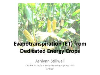 Evapotranspiration (ET) from Dedicated Energy Crops