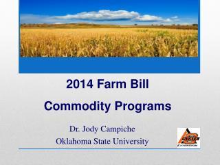 Dr. Jody Campiche Oklahoma State University