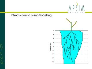 Introduction to plant modelling