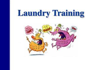 Laundry Training