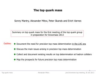 Summary on top quark mass for the first meeting of the top quark group