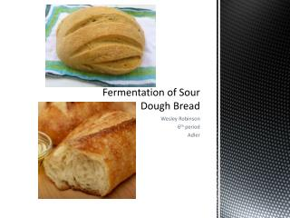Fermentation of Sour Dough Bread